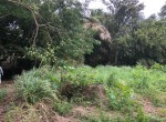 residential-land-for-sale-blackriver
